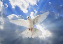 Série Espírito Santo – É bíblico o batismo em nome de Jesus?