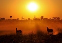 Meditação de por do sol - Aterrador acerto de contas