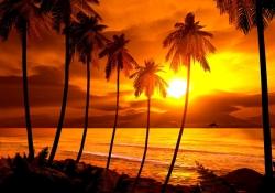 Meditação de por do sol - Uma bênção para toda a espécie humana