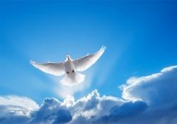 Lição 4 - O Espírito Santo na vida de Cristo