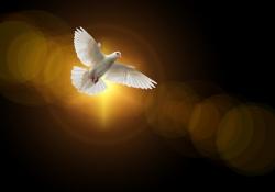 A obra humana torna-se eficaz com o Espírito Santo