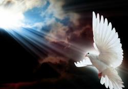 Estudo Adicional - Símbolos do Espírito Santo