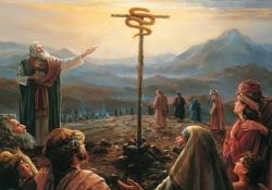 A jornada em redor de Edom